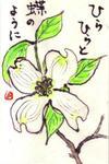 E20084hanamizukiw_5