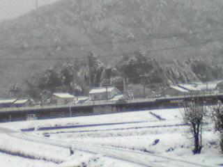二度目の積雪